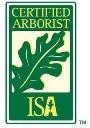 ISA certified arborist Dylan Nall